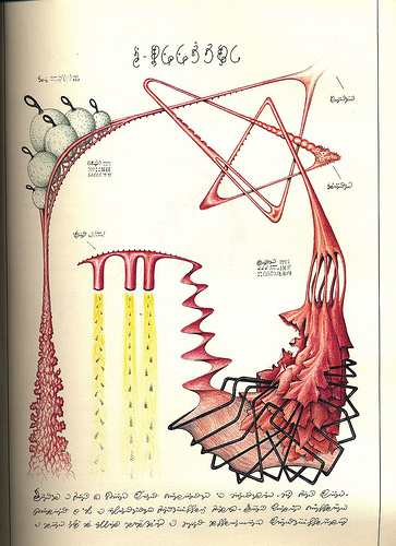 Codex seraphinianus pdf high resolution