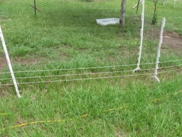 Chicken wire fence how to build