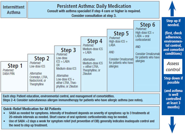 Nice asthma guidelines 2017 pdf